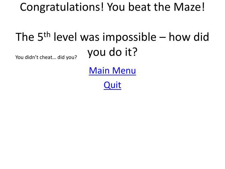 Congratulations! You beat the Maze!