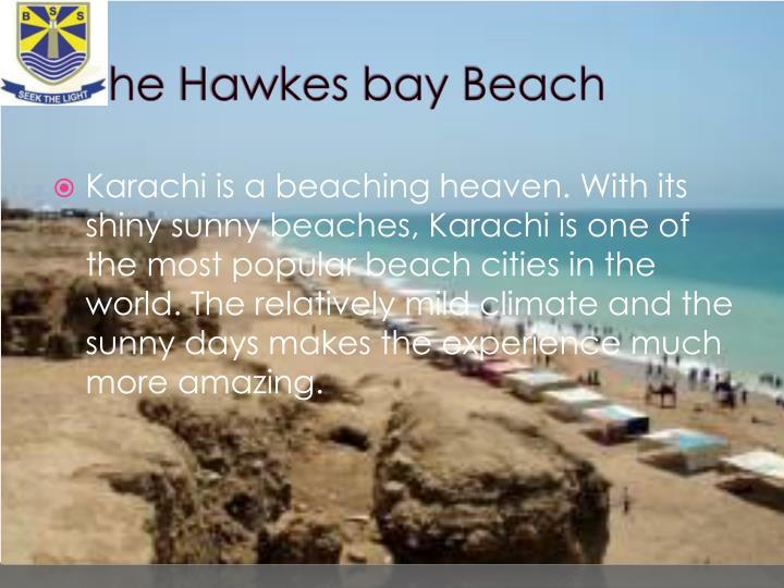 The hawkes bay beach