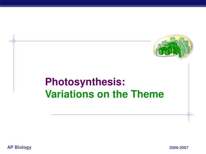 photosynthesis variations on the theme