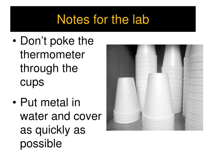 Notes for the lab