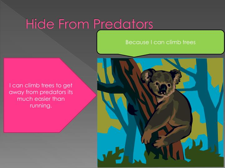 Hide From Predators