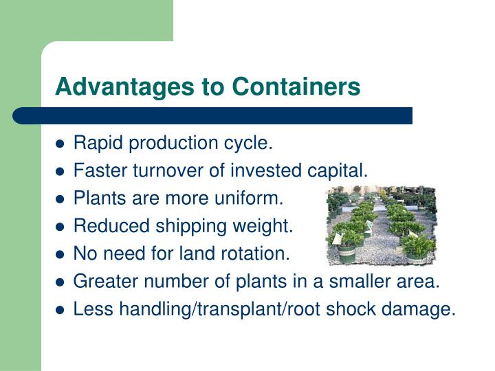 Advantages to Containers