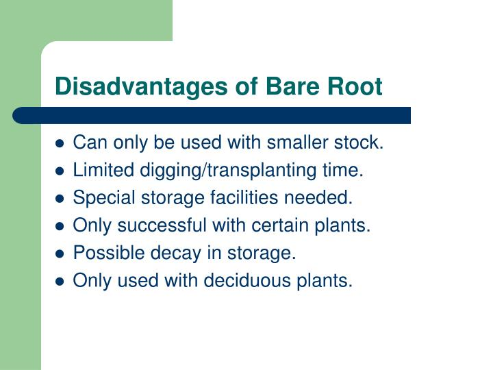 Disadvantages of Bare Root