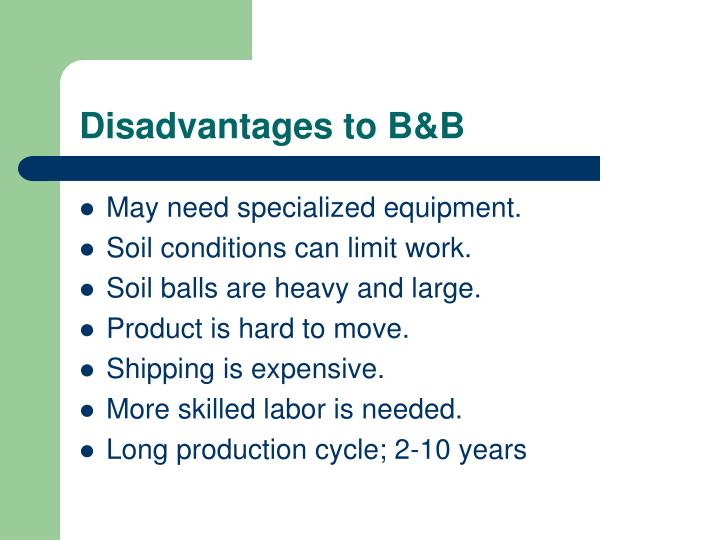 Disadvantages to B&B