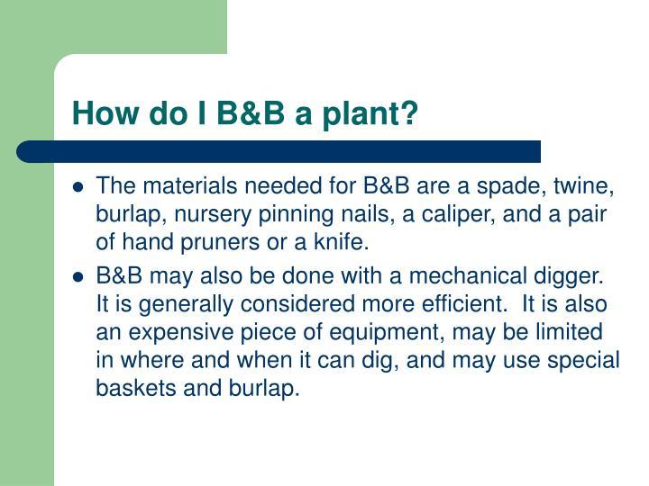 How do I B&B a plant?