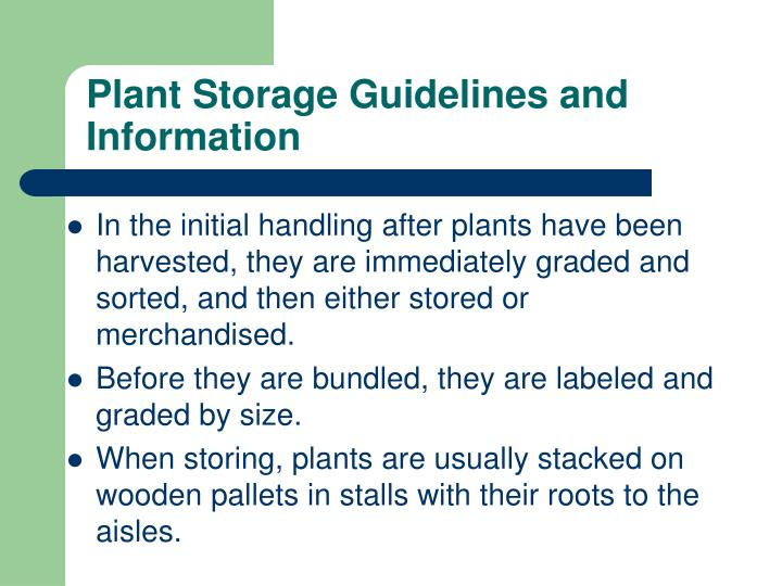 Plant Storage Guidelines and Information
