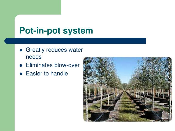 Pot-in-pot system