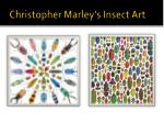 christopher marley s insect art