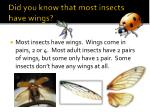did you know that most insects have wings