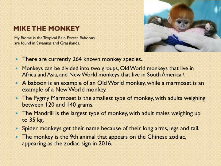Mike the Monkey