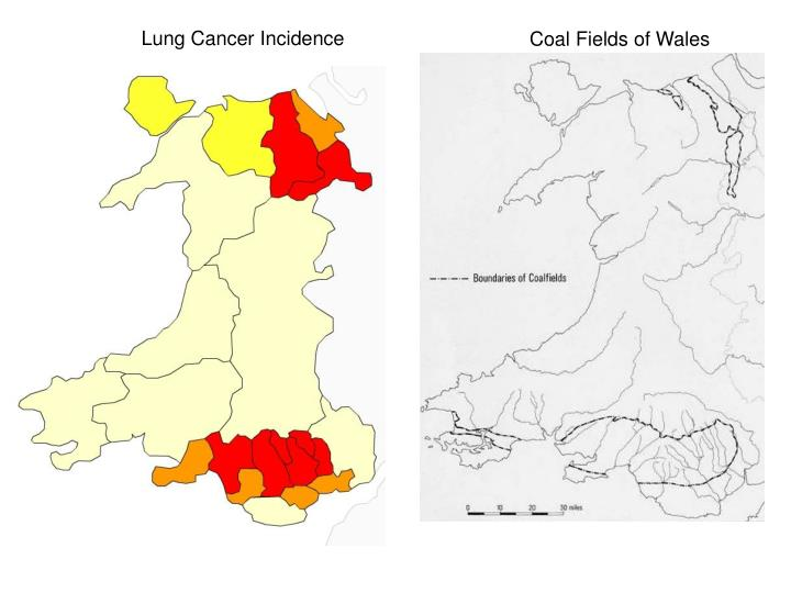 Lung Cancer Incidence