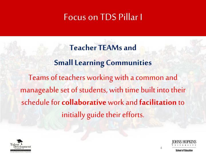 Focus on TDS Pillar I