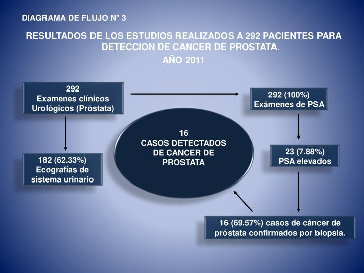 Hermosa Diagrama De Cáncer De Próstata Cresta - Anatomía de Las ...