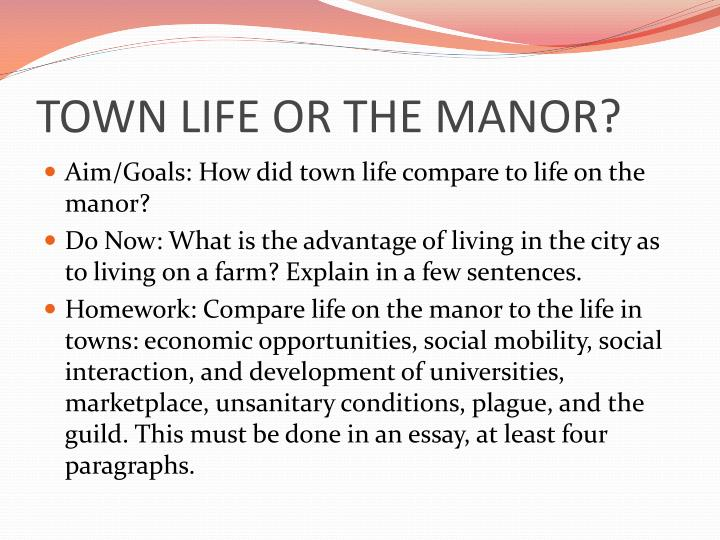essay on town life
