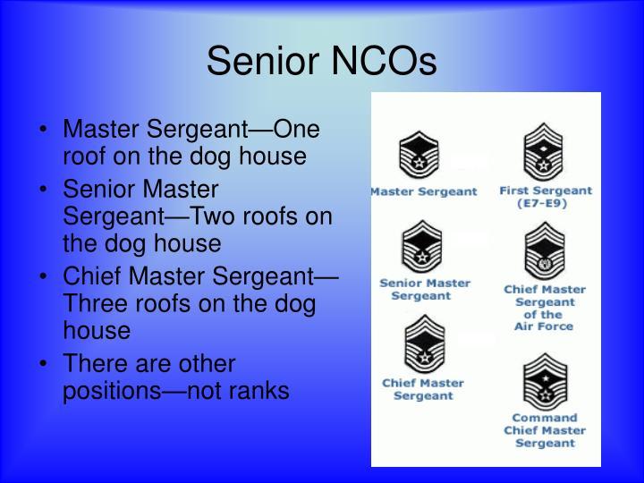 Senior NCOs