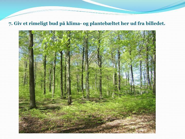 7. Giv et rimeligt bud på klima- og plantebæltet her ud fra billedet.