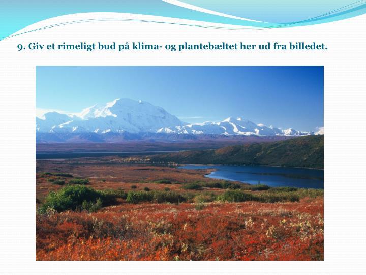9. Giv et rimeligt bud på klima- og plantebæltet her ud fra billedet.