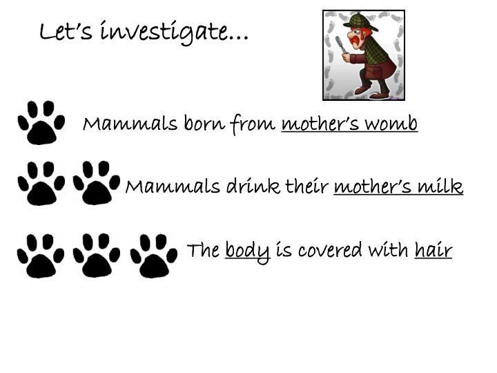 Let's investigate…