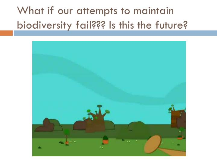 What if our attempts to maintain biodiversity fail??? Is this the future?