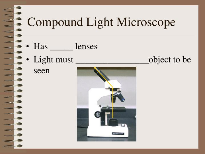 a lab report on the use of compound light microscope and the impact of its parts on the magnificatio Medwormcom provides a medical rss filtering service thousands of medical rss feeds are combined and output via different filters this feed contains the latest research in.