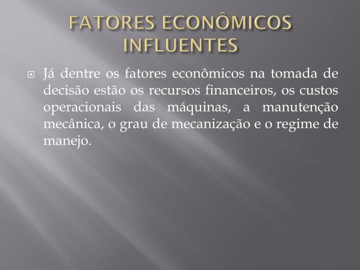 FATORES ECONÔMICOS INFLUENTES
