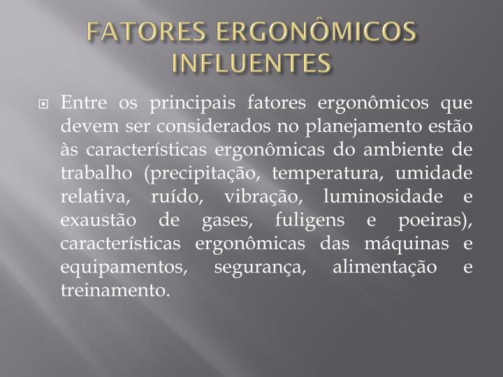 FATORES ERGONÔMICOS INFLUENTES