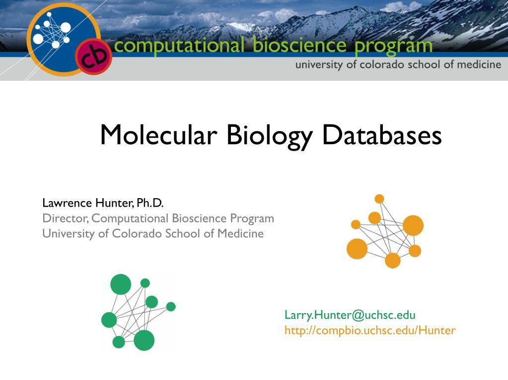 Ppt central dogma of molecular biology powerpoint presentation.