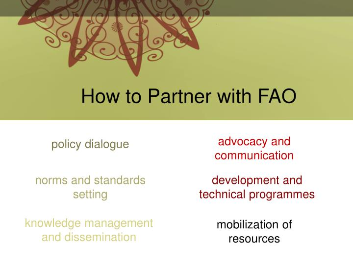 How to Partner with FAO