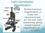 light microscope magnification