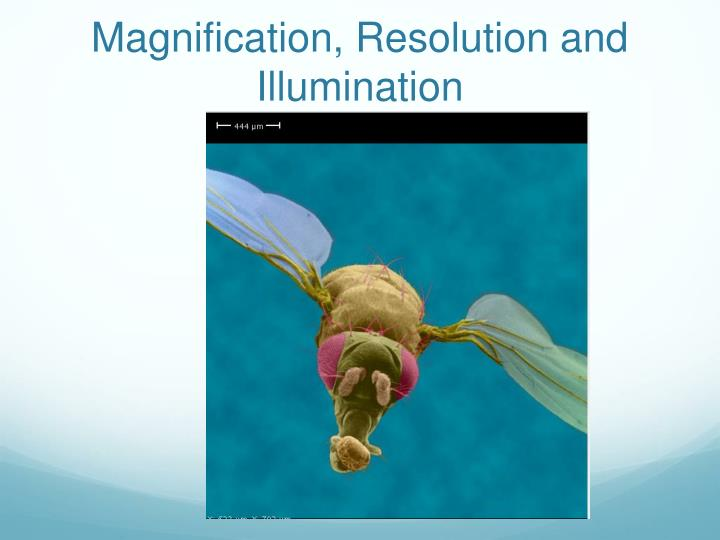 magnification resolution and illumination n.