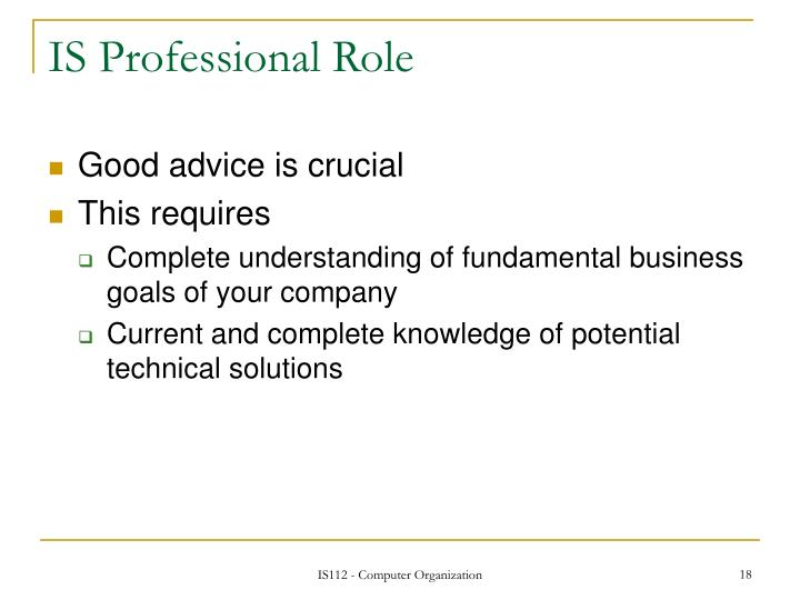 IS Professional Role