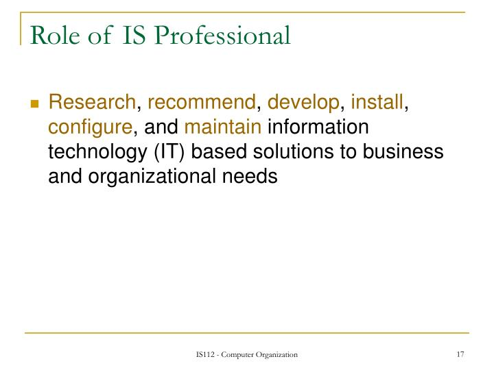 Role of IS Professional