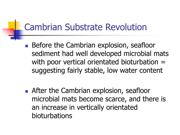 Cambrian Substrate Revolution