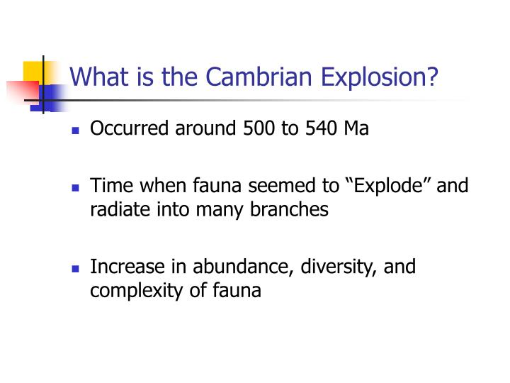 What is the cambrian explosion