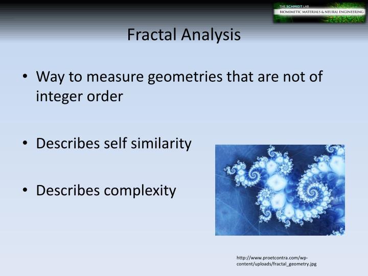 Fractal Analysis