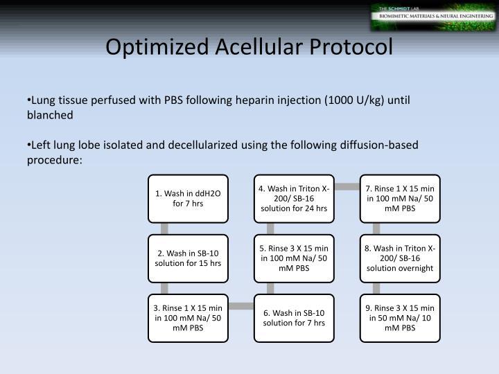 Optimized Acellular Protocol