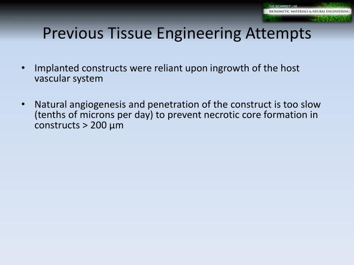 Previous Tissue Engineering Attempts