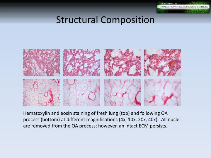 Structural Composition