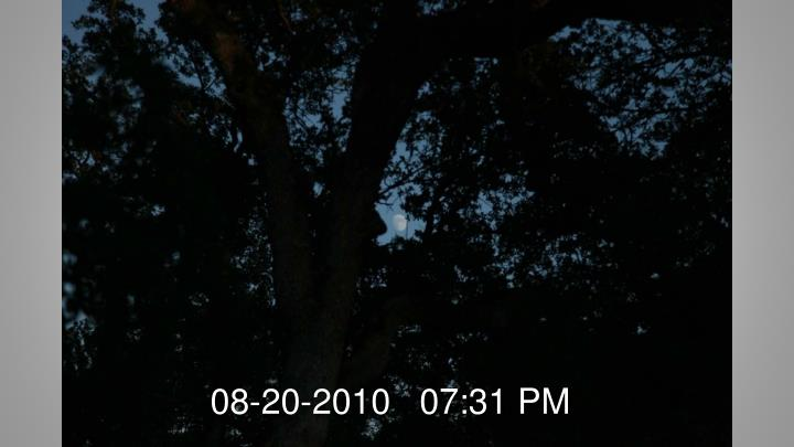 08-20-2010   07:31 PM
