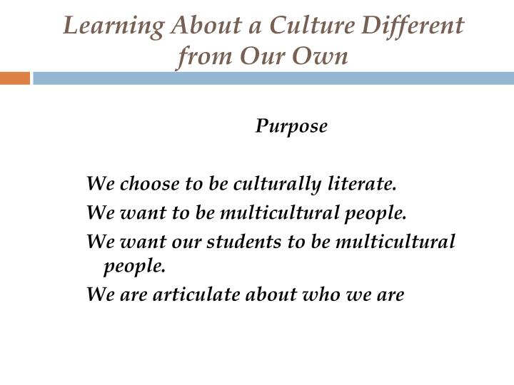 learning about a culture different from our own n.