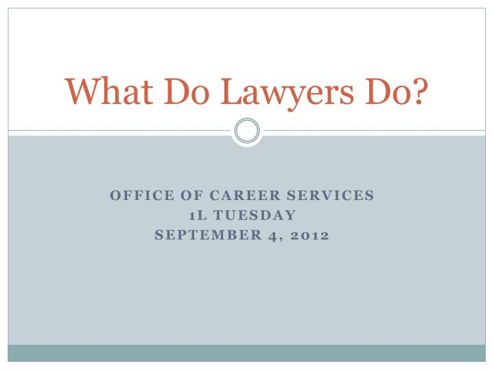 what do lawyers do n.