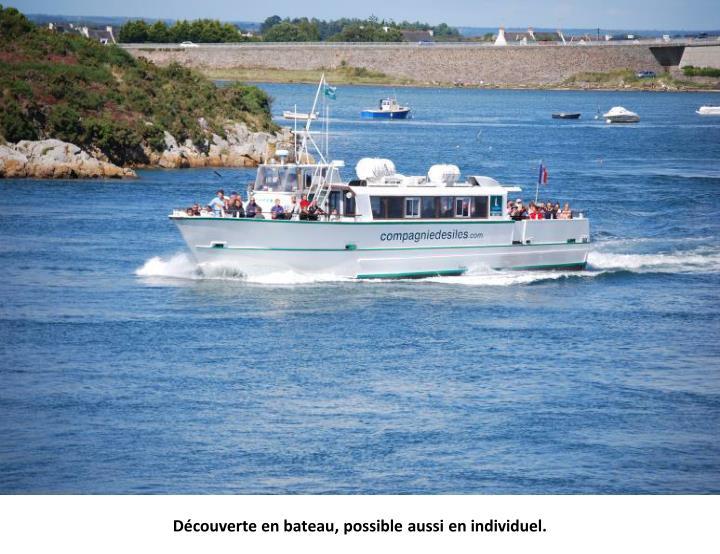 Découverte en bateau, possible aussi en individuel.