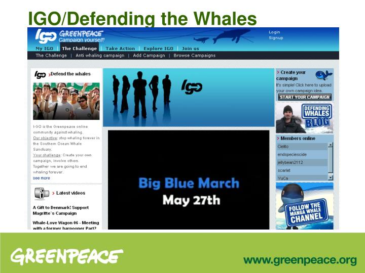 IGO/Defending the Whales