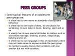 peer groups1