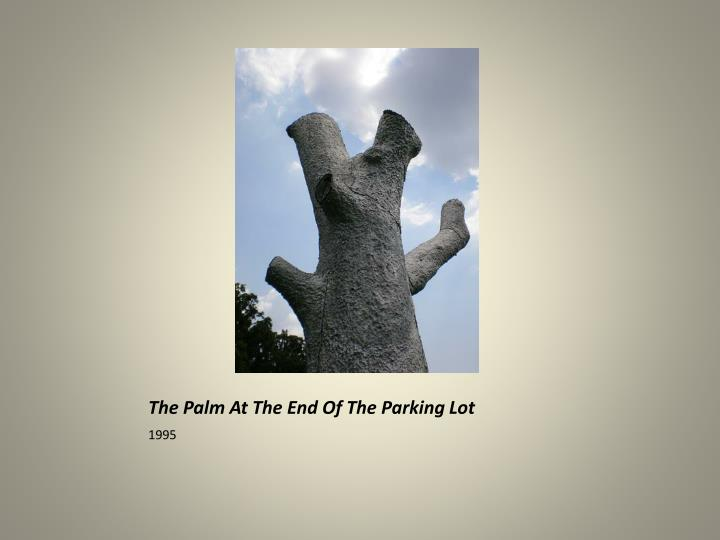 The palm at the end of the parking lot