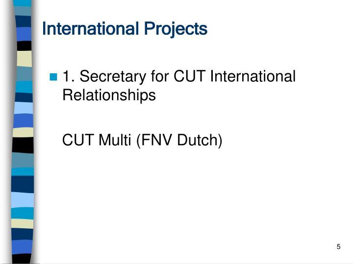 International Projects
