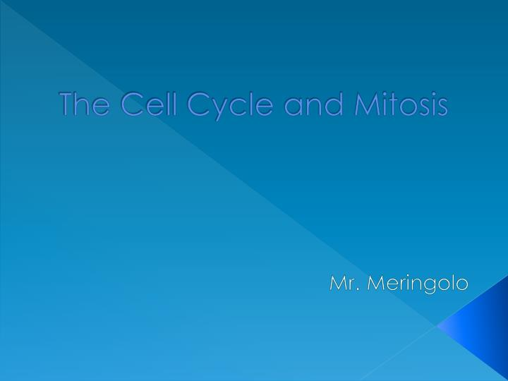 the cell cycle and mitosis n.