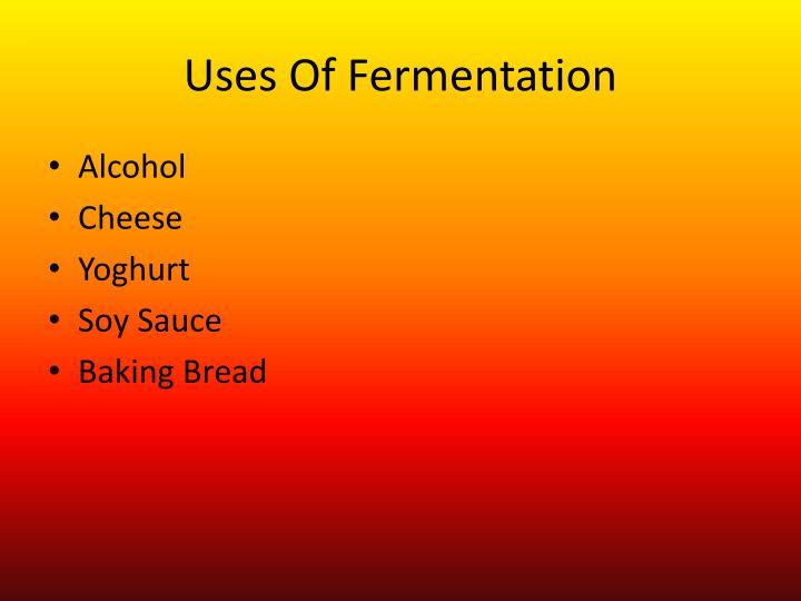 Uses Of Fermentation