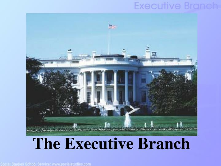 the executive branch n.