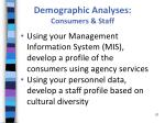 demographic analyses consumers staff